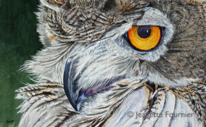 Birds Eye View-Eagle Owl WI 600- Jeanette Fournier