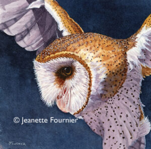 Flying Owl - Jeanette Fornier